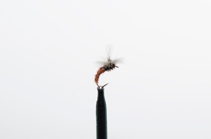 disse-fluene-fisket-best-i-2015-5
