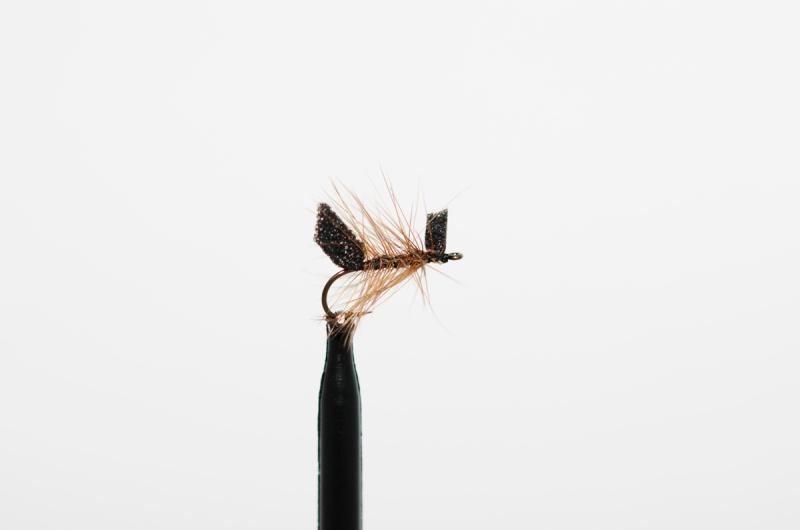disse-fluene-fisket-best-i-2015