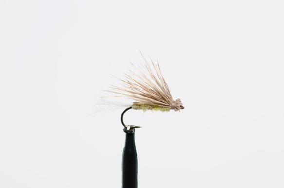 disse-fluene-har-jeg-troen-pa-i-2016-5