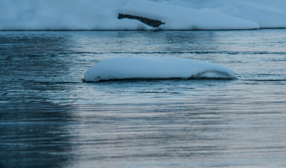 fiskeelva-i-vinterdrakt-3