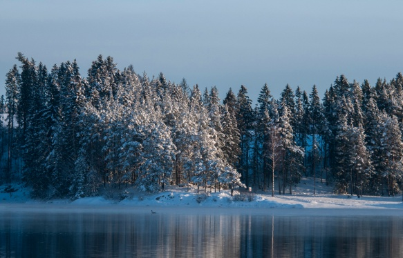 fiskeelva-i-vinterdrakt