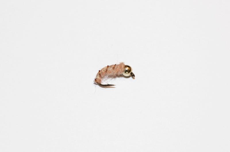 disse-fluene-fisket-best-i-2016-2
