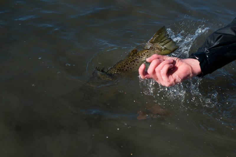 Ny pers på årets første fisketur --3