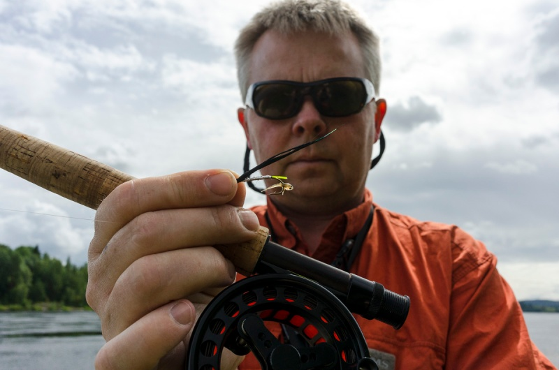 En liten fiskehistorie-