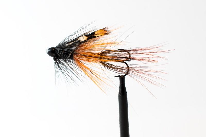 Shrimp-føre-3