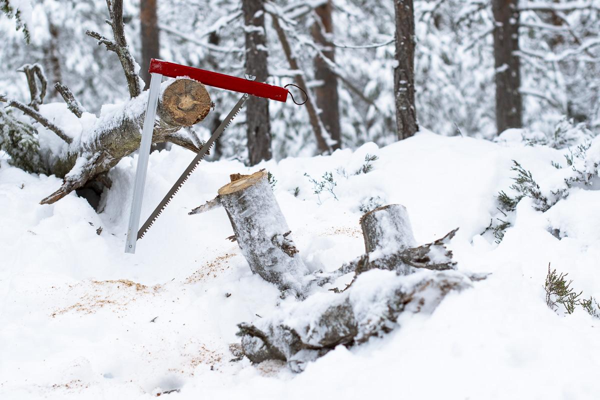 Sven-saw-2